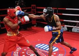 boxers-652385__180