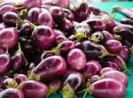 eggplant-1344610__180