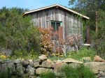 cottage-168115__180
