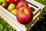 apple-1589869__180